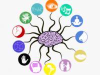بسته جامع آموزشی شبکه های عصبی MLP