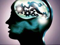 شگردهای بهبود قدرت یادگیری شبکه های عصبی